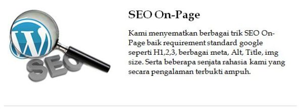 detail seo on page