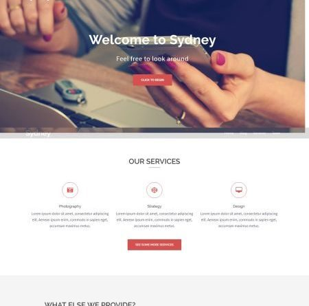wordpress theme amp free