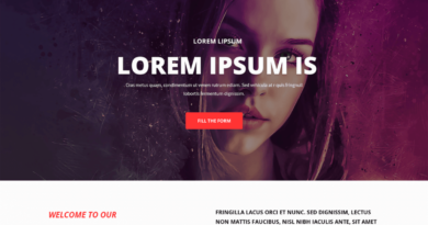 5 Wordpress Theme Animasi Responsif